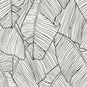 Walls Republic White/Black Leaf Outline Abstract Wallpaper