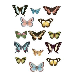 WallPops Spread Your Wings Wall Art Kit