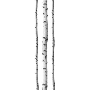 WallPops Silver Birches Wall Art Kit