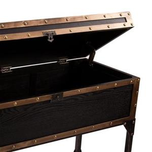 Boston Loft Furnishings Davon Travel Trunk Console Table