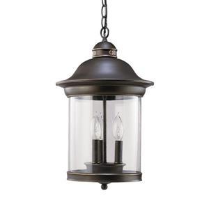 Sea Gull Lighting Hermitage Antique Bronze Transitional Clear Glass Lantern Pendant
