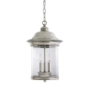 Sea Gull Lighting Hermitage Brushed Nickel Transitional Clear Glass Lantern Pendant