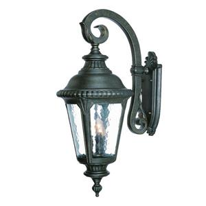 Acclaim Lighting Surrey 29.25-in Black Gold 3-Light Outdoor Wall Lantern