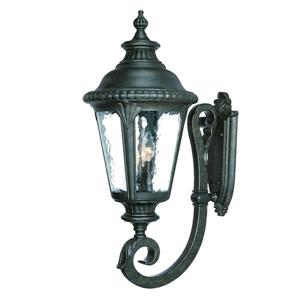 Acclaim Lighting Surrey 29-in Black Gold Outdoor Wall Lantern