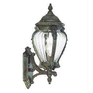 Acclaim Lighting Nottingham 20.75-in Black Coral Outdoor Lantern