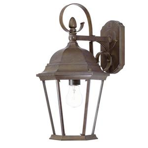 Acclaim Lighting New Orleans 17.75-in Burled Walnut Outdoor Wall Lantern