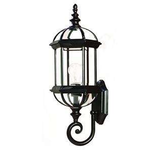 Acclaim Lighting Dover 21.5-in Matte Black 1-Light Outdoor Wall Lantern
