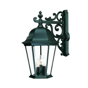 Acclaim Lighting Richmond 22-in Matte Black 3-Light Clear Beveled Outdoor Wall Lantern