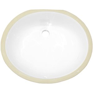 American Imaginations Brushed Nickle/White 16.5-in W CSA Ceramic Undermount Oval Sink Set With Drain