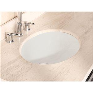 American Imaginations 19.75-in Ceramic Biscuit Undermount Sink Set