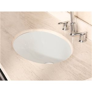American Imaginations 19.5-in Ceramic Biscuit Undermount Sink Set