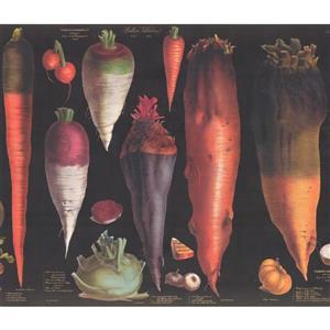 Retro Art Vegetables Wallpaper - Black