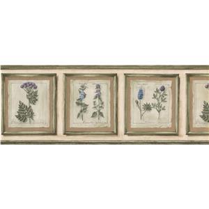 Norwall Plants in Frames Wallpaper Border - 15' x 9-in- Beige