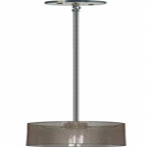 Whitfield Lighting Modena Pendant Light - 1 Light - 8-in - Satin Steel