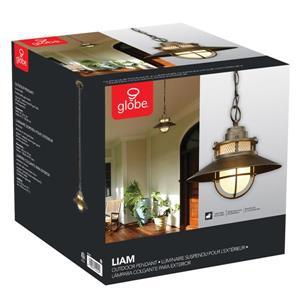 Globe Electric Liam Outdoor Pendant Light - 46.42-in - Bronze
