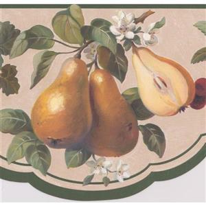 "Retro Art Wallpaper Border - 15' x 7"" - Vintage Fruits on Vines"