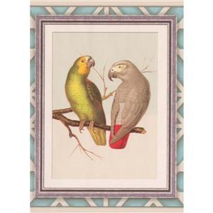 """Retro Art Wallpaper Border -15' x 10.2"""" -Parrot Pictures - Multicolour"""