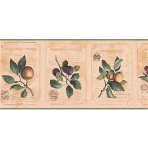 York Wallcoverings Prepasted Fruits on Vine Wallpaper Border - Latte