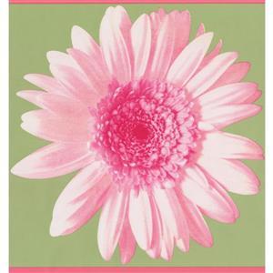 York Wallcoverings Modern Floral Wallpaper Border - Pink/Green