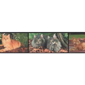Retro Art Modern Cats Wallpaper Border Roll - 15'