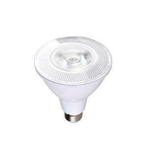 SmartRay LED PAR30 Light Bulb - White