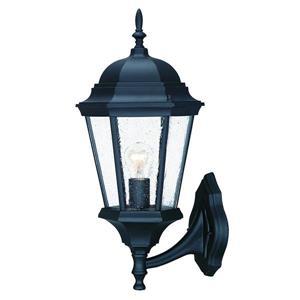 "Acclaim Lighting Richmond 1-Light Wall Mount Lantern - 9"" x 21.5"" - Black"
