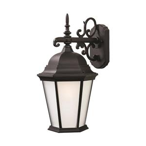 "Acclaim Lighting Richmond 1-Light Wall Mount Lantern - 9.5"" x 17.5"" - Black"