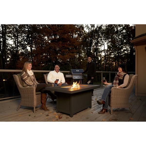 Napoleon Hamptons Rectangle Fire Pit 52 In X 25 In Aluminum Gray Lowe S Canada
