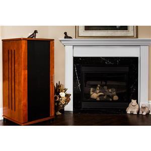 Plateau Craftsman Modern Enclosed Audio Rack - Black Oak - 52-in