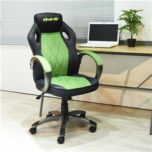 FurnitureR Game Racing Office Chair - Black and Green