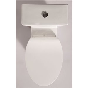 EAGO Elongated 1-Piece Toilet - Comfort Height - 16.5-in - White