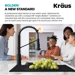 Kraus Bolden Pull-Down Kitchen Faucet - Single Handle - 18-in - Stainless Steel
