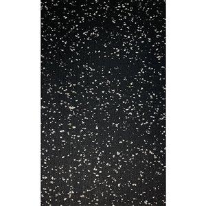 RubberMax Roll - Rubber Floor Tile - 600-in x 48-in - 200 sq ft - Black, flecked gray