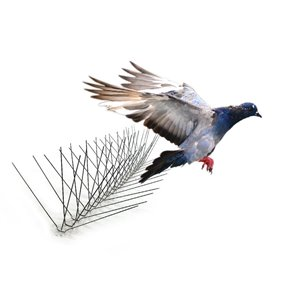Bird-X Extra Wide Stainless Steel Bird Spikes - 24-ft Kit