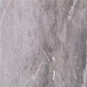 Mono Serra Porcelain Tile 24-in x 24-in Excalibur Dark Gray 16.04 sq.ft. / case (4 pcs / case)