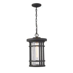 Z-Lite Jordan 1 Light Outdoor Chain Mount Ceiling Fixture - 10-in x 16.25-in - Black/Seedy Glass