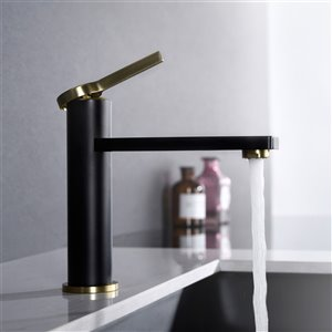 Lukx® Splash Michael Single Hole Basin Faucet - Matte Black/Brushed Bronze
