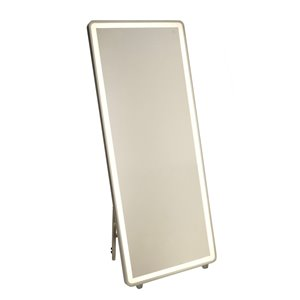 Artcraft Lighting Reflections AM311 LED Mirror - 27.5-in x 67-in - Brushed Aluminum