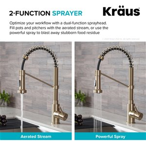 Kraus Single Handle Faucet with Soap Dispenser - Antique Champagne Bronze