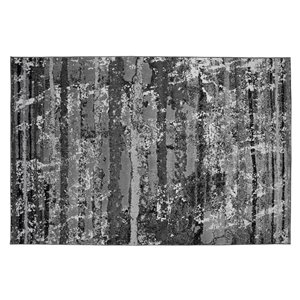Collection Bourbon Street Gainesville Area Rug - 5-ft x 8-ft - Light Grey