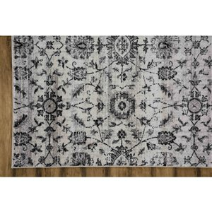 Collection Bourbon Street Georgetown Area Rug - 5-ft x 8-ft - Ivory