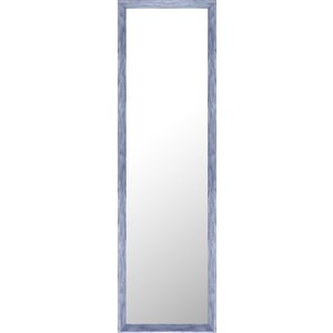 Mirrorize Canada 49.5-in L x 13.5-in W Rectangle Blue Patina Framed Door Mirror