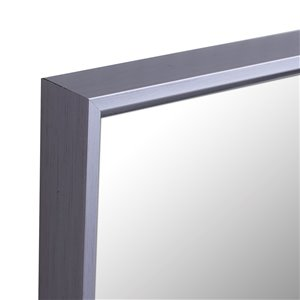 Mirrorize Canada 49.5-in L x 13.5-in W Rectangle Taupe Framed Door Mirror