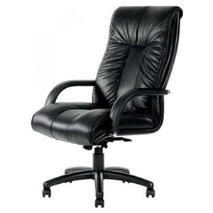 Nicer Interior Executive Office Chair with Lumber Support - Black