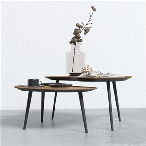 Organic Coffee Table Set - 2 Pieces - Wood