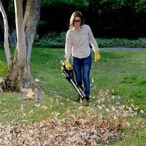 Greenworks Cordless Leaf Blower with Lithium-Ion Battery - 80-Volt - 500 CFM - 125-mph