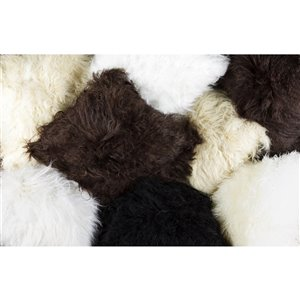 Natural by Lifestyle Mongolian Sheepskin 2-Piece Black 12-in x 20-in Rectangular Indoor Decorative Pillow