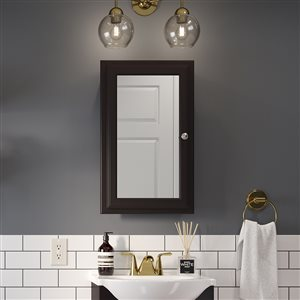 Style Selections 15.75-in x 25.75-in Rectangle Surface/Recessed Medicine Cabinet with Mirror