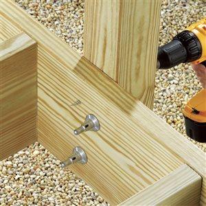 FastenMaster #0 Silver ThruLOK Structural Wood Screws