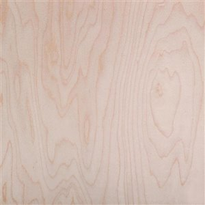 1/2-in x 4-ft x 8-ft Maple Plywood Panel | Lowe's Canada